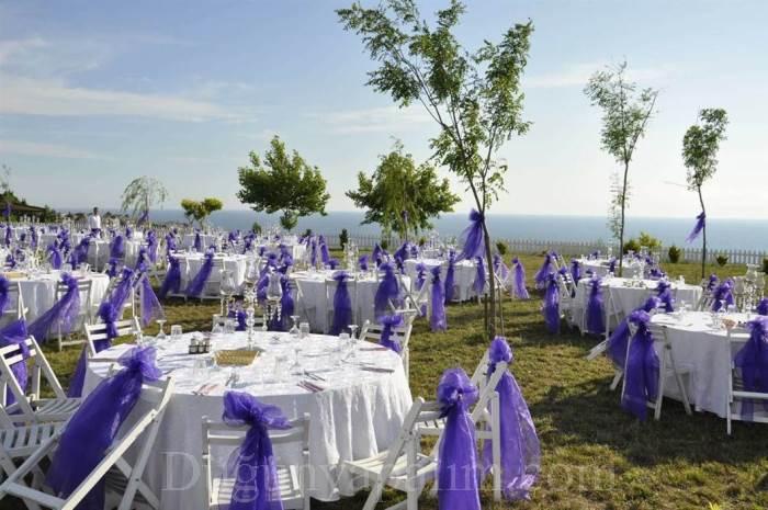 Eflatun Kır Düğünü