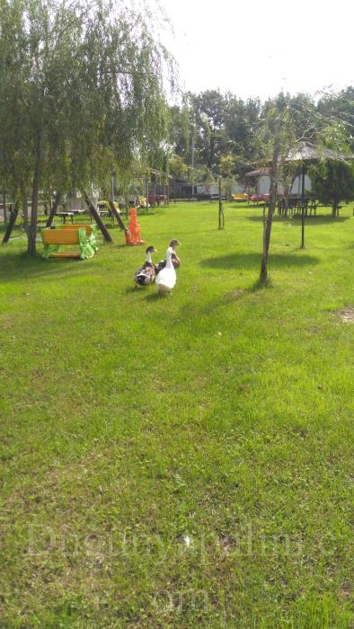 Bozhane Green Park
